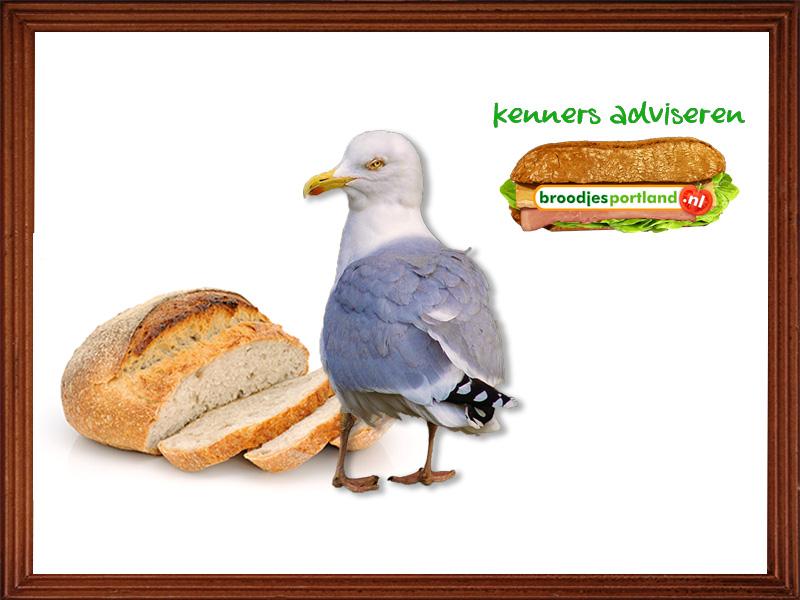 Kennis adviseren